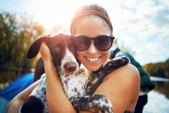 How_to_Protect_Pets_This_Summer.max-784x410